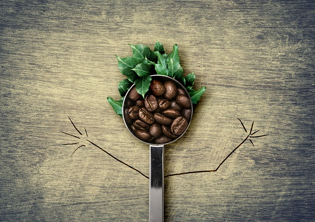 kawa zielona - jakie ma wlasciwosci i smak